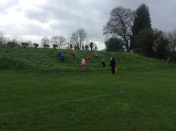 Fernhill 2