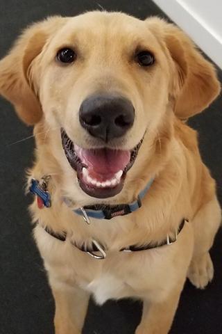 Meet Spencer!