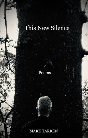 This New Silence Cover.jpg
