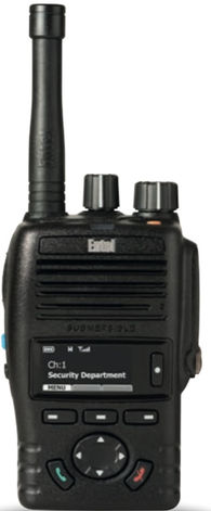 PORTATIF RADIO DMR ENTEL-DX422.jpeg