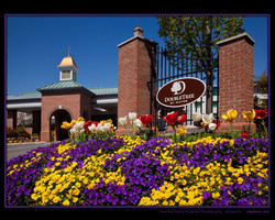 COMMERCIAL_DoubleTree_7163-border