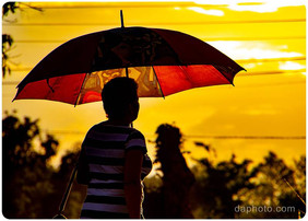 Umbrellas, for Rain or Sun