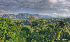 Magotes of Vinales Valley