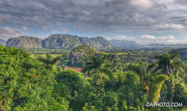 Magotes of Vinales Valley