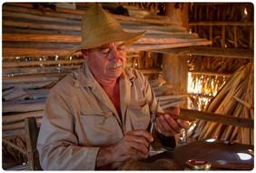 Leonardo, cigar roller