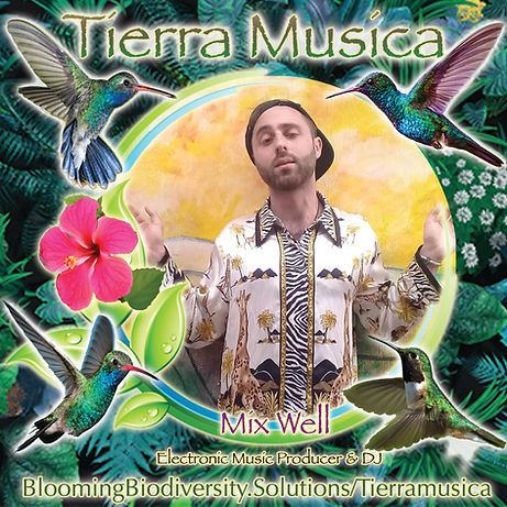 Mixwell_Tiera Musica.jpg