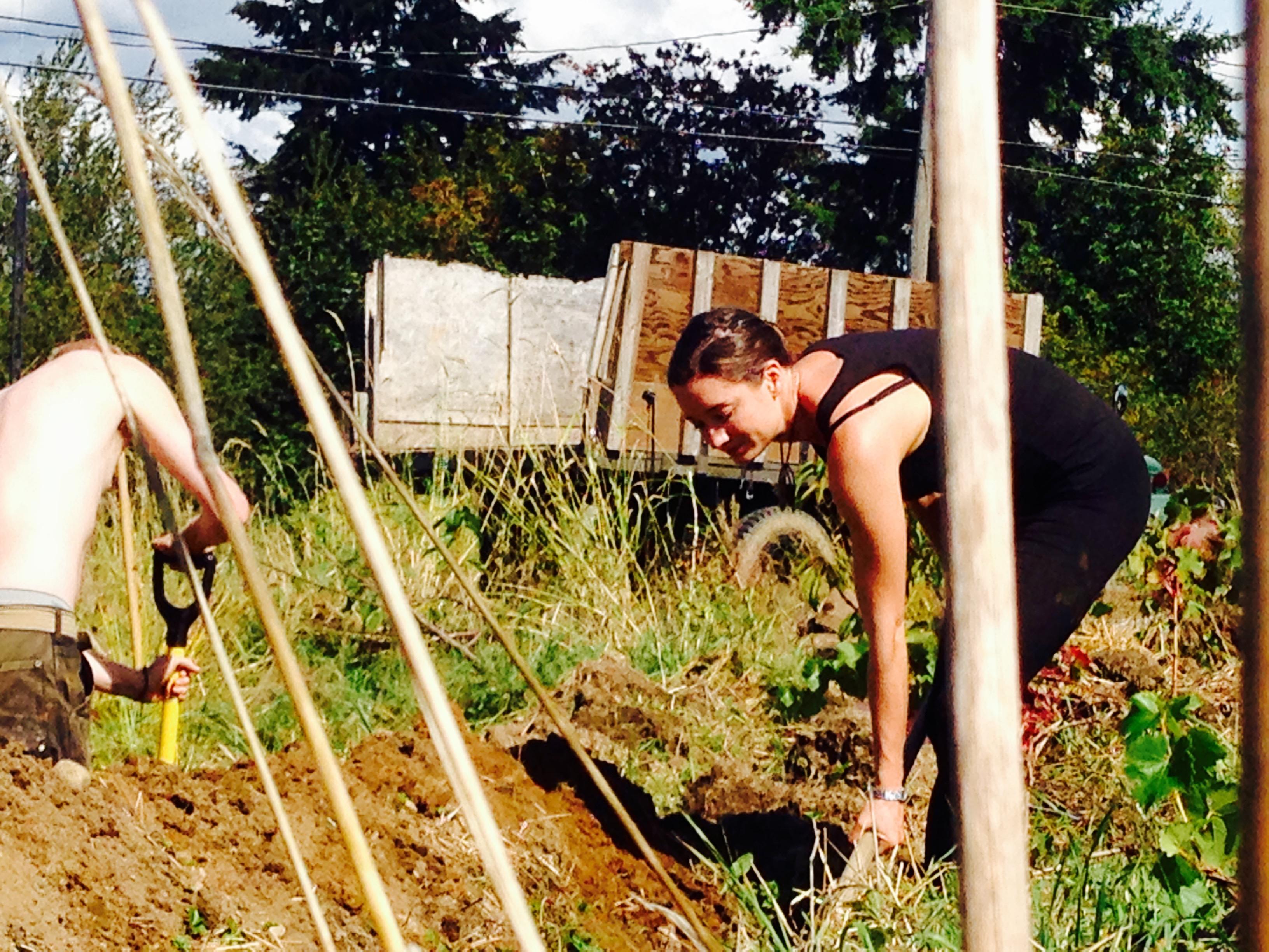 Sophia digging a swale!