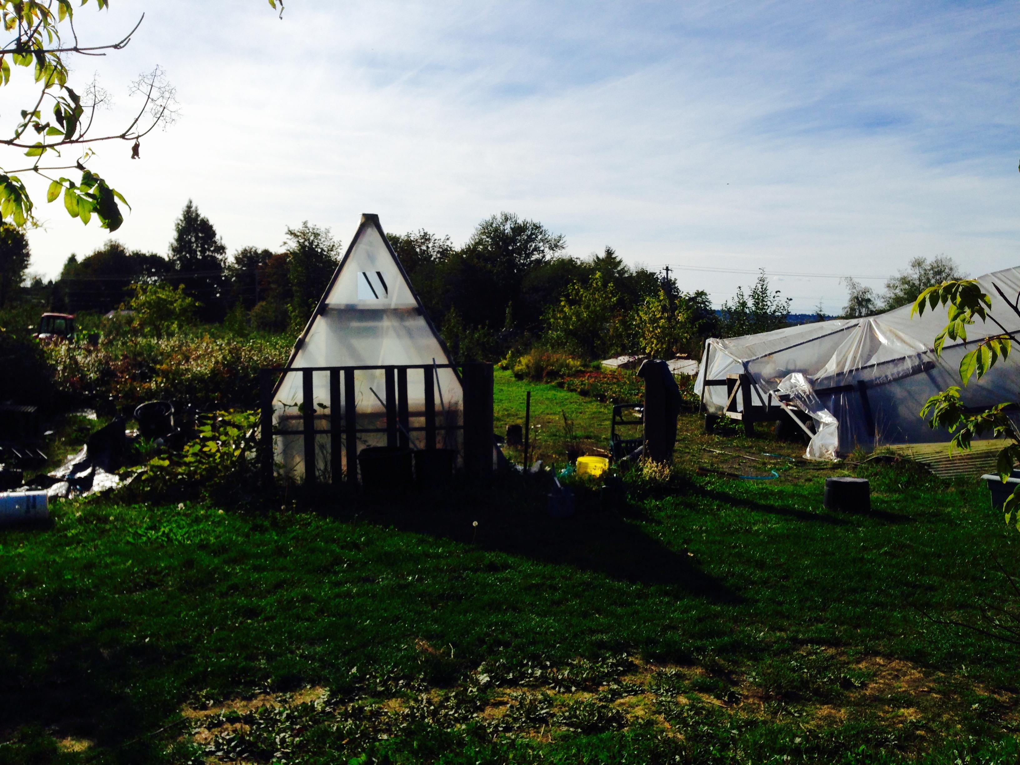 The farm!