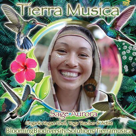 Sage_Tiera Musica.jpg