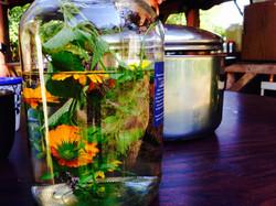 Herbal Tea!