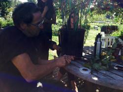 Gil Schieber grafting