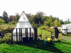 Greenhouse!