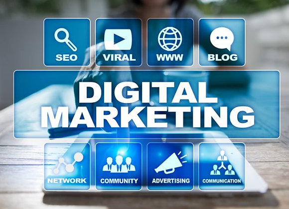 Online SEO Marketing Professional Package