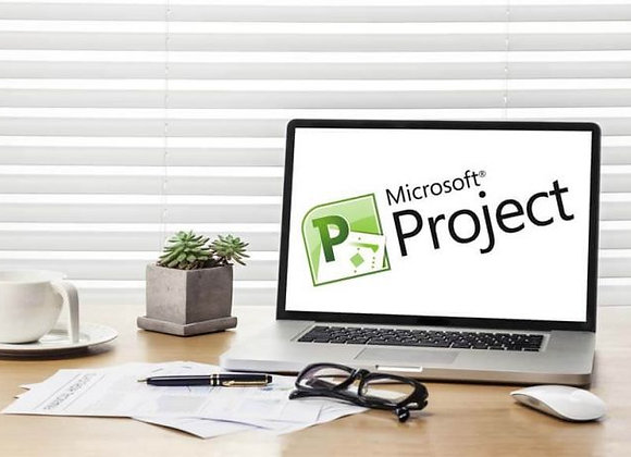 Mastering Microsoft Project 2016- 2 Part Bundle