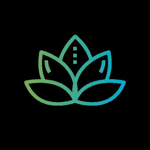 plain logo CCT.png