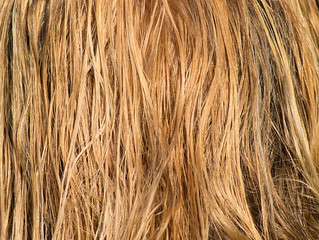 Hair Breakage has Many Causes