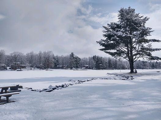 4.Winter.1.15.21.jpg