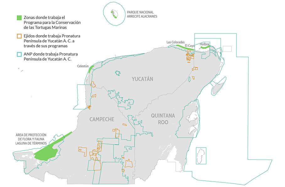 mapa_tortugas.png
