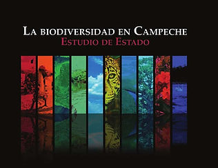 camp biodiversidad.jpg
