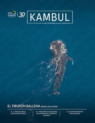 kambul jul-ago 2020-1.jpg
