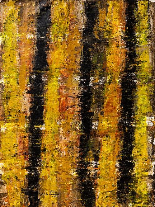 Muro II - 70 x 50 cm - por Arlita Angrizani