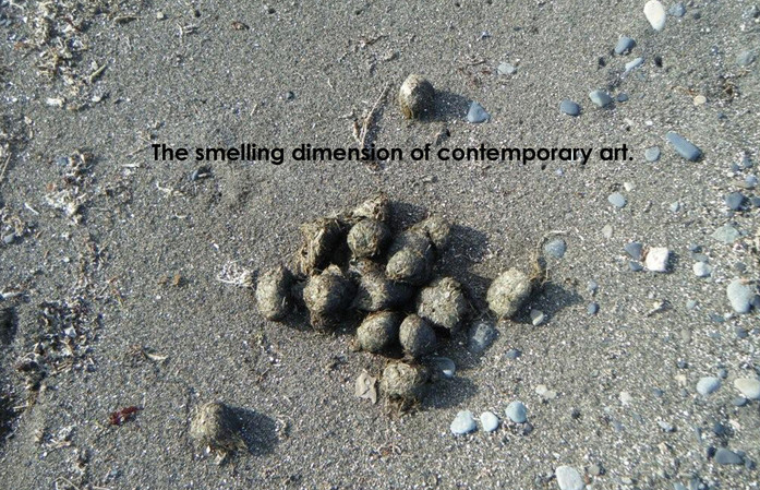 the smelling dimension 1kopie.jpg