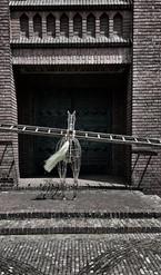 Paard en ladder_1_Herwig Nulens.jpg