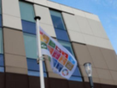 Vlag Duurzamehelden gemeentehuis.jpg