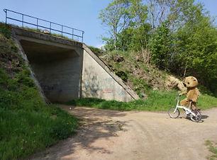 Wegwijzer12_Onder brug naar tuintjes.jpg