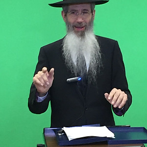 Rabbi Dovid Goldwasser - Your Mission in This World