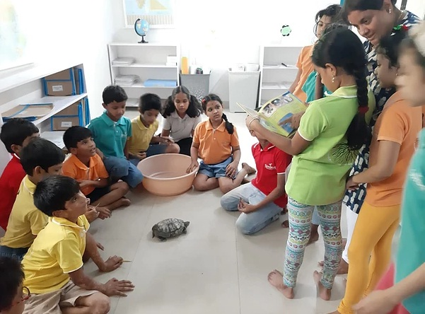 Live Zoology session!