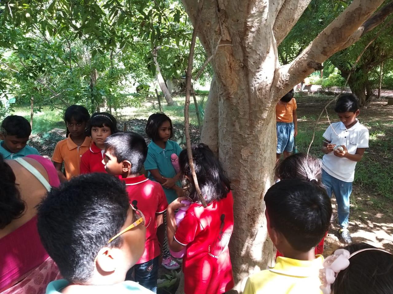 A day at the Kotturpuram Park