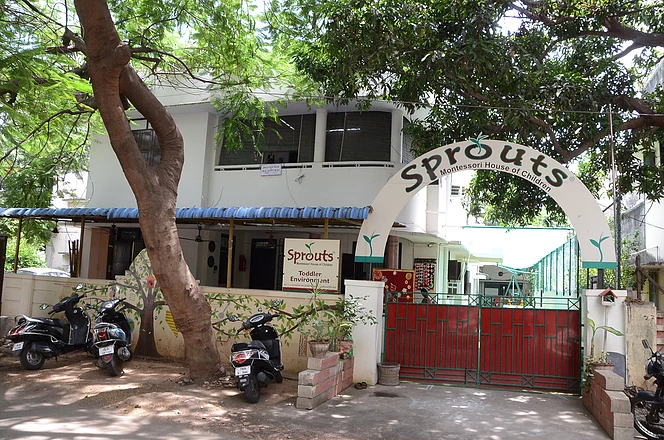 A home away from home-Sprouts my school.