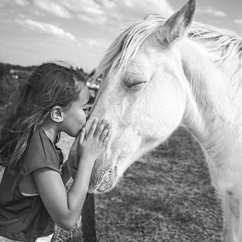 woman in blue t-shirt standing beside white horse during daytime_edited_edited_edited.jpg