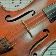 Woodfield Strings