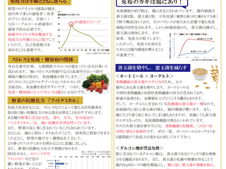 GYC通信Vol.10発行