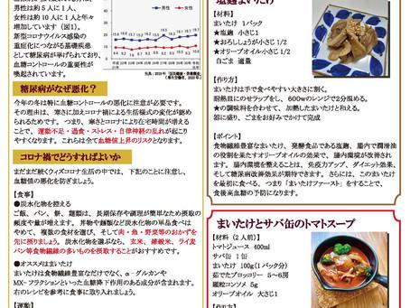GYC通信Vol.11発行