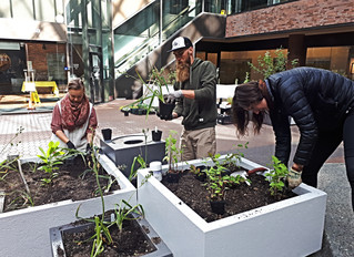 ANewLearning Garden isComing to Victoria!