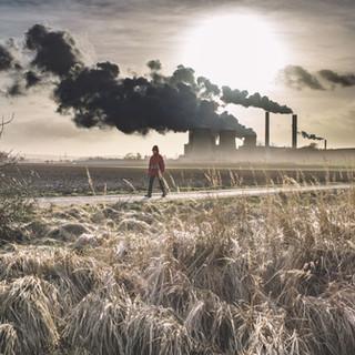 Fintual: Empresa de inversión se suma a reducción de huella de carbono