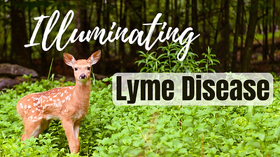 25 Illuminating Lyme Disease.png