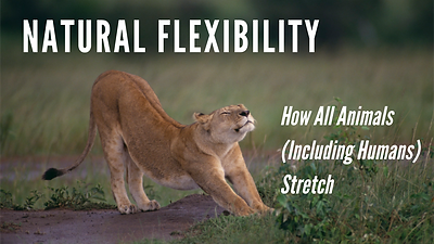 2 natural flexibility.png
