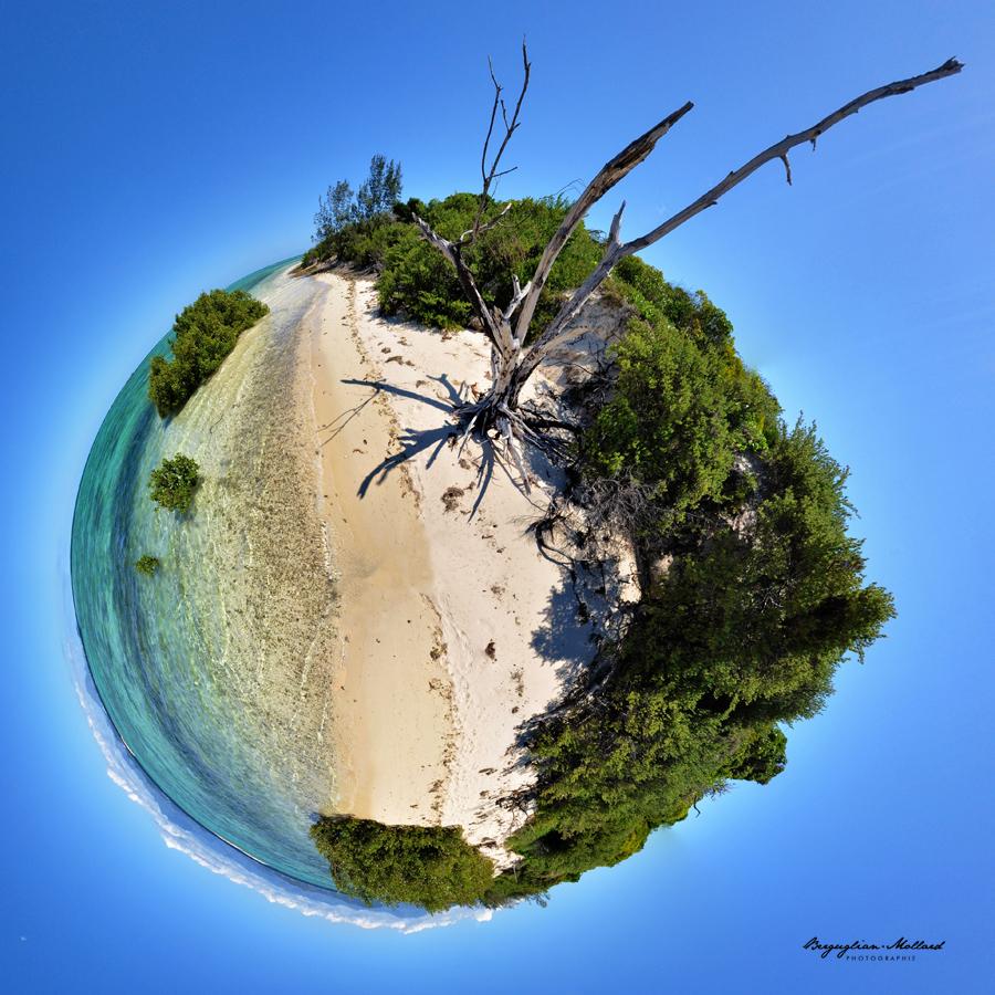 #36 Ilot Signal bois mort Nouvelle-Caledonie