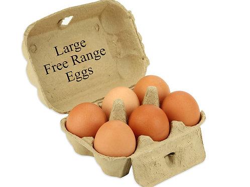 Free Range Eggs Large