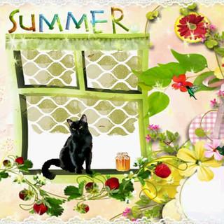 summer24