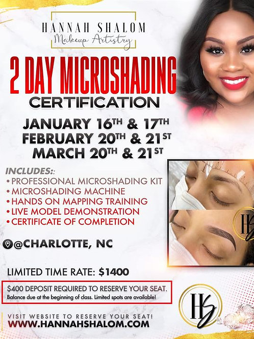 March Class- 2 Day MicroShading Class- March 20th & 21st