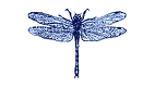 Blue_Dragonfly2.png