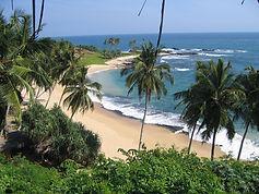 le splendide spiagge dello Sri Lanka