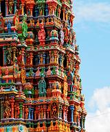 il tempio Meenaski Madurai