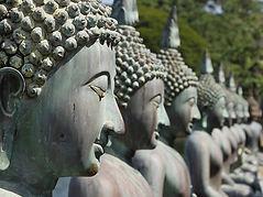 statue di buddha in sri lanka