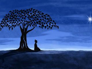 I luoghi del Buddha, Bodh Gaya